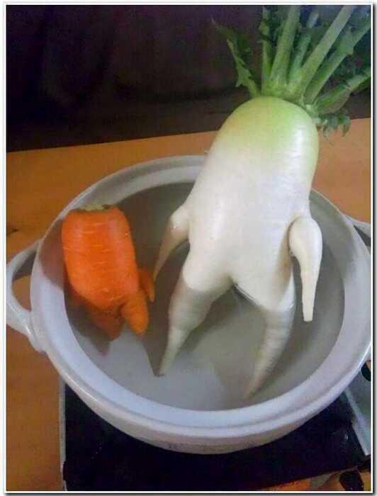 13 овощей и фруктов, которые совсем непохожи на овощи и фрукты