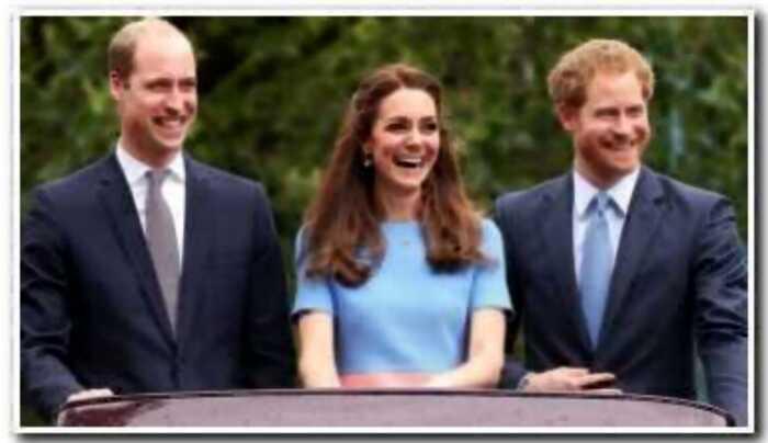Королевский юмор: шутки британских принцев Гарри и Уильяма