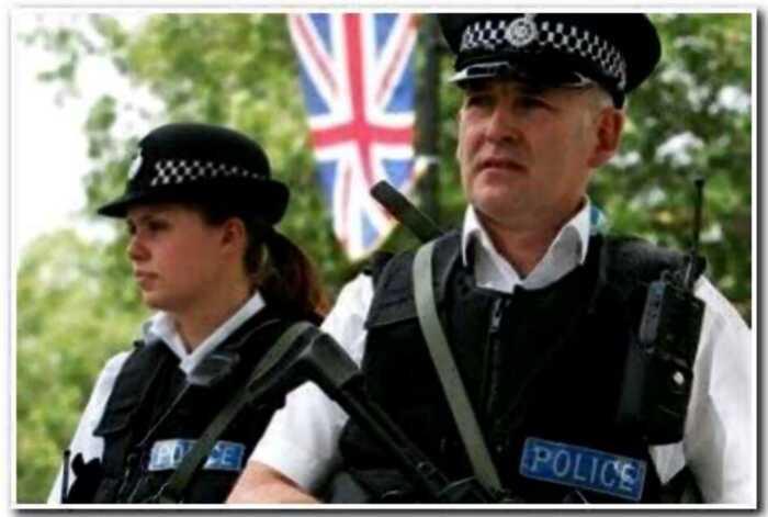 В англии щенка чау-чау арестовали на девять месяцев за укус полицейского