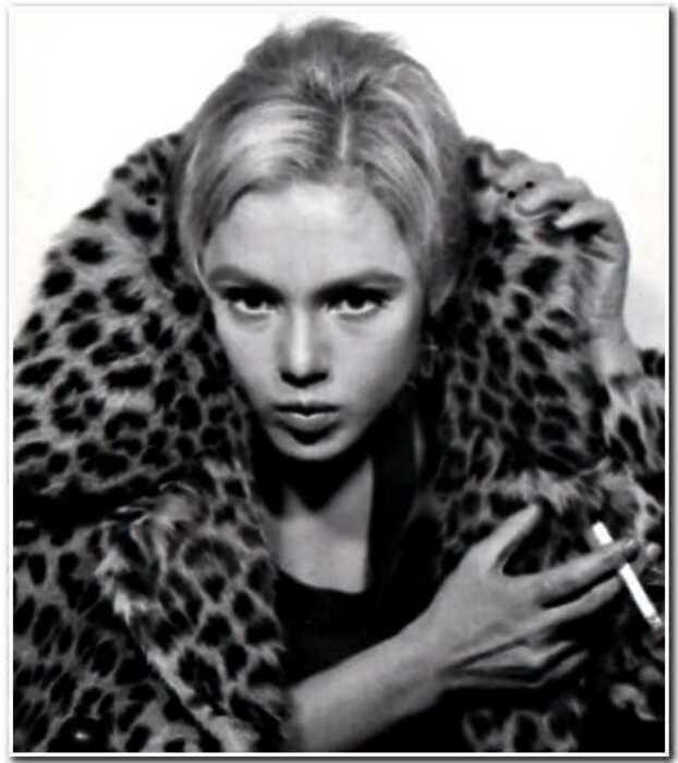 Эди Седжвик — икона стиля 60-ых и первая it-girl