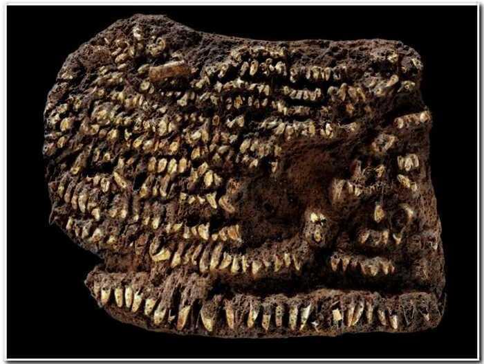 16 удивительных вещей древности, которые дошли до наших дней