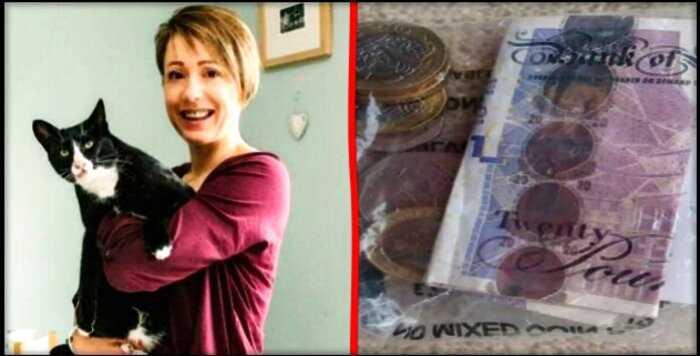 """""""Настоящий добытчик"""": в Англии домашний кот начал приносить своей хозяйке деньги"""
