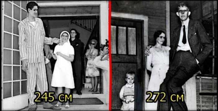 20 гигантов из прошлого и настоящего, которые вас удивят