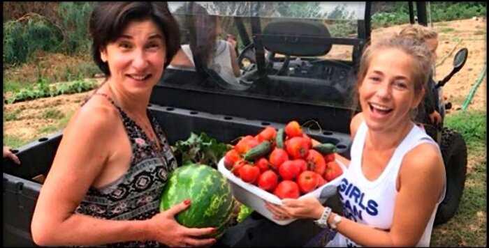 Многодетная Барановская вынуждена трудиться на томатной плантации, чтобы прокормить семью