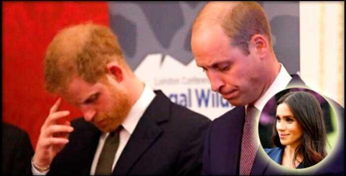 В сети возмущены тем, как Меган Маркл и Принц Гарри поздравили Принца Уильяма с днем рождения