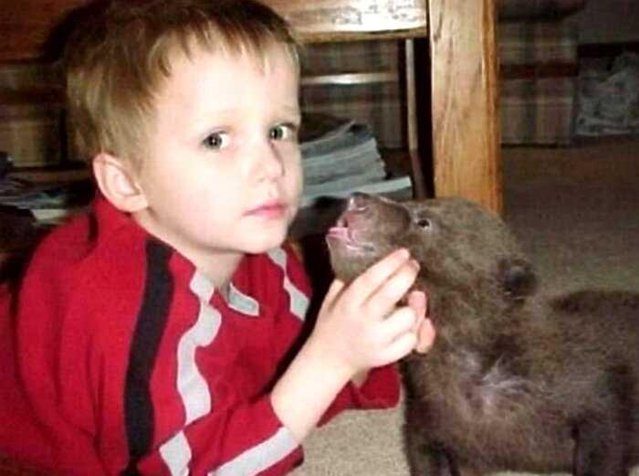 Когда-то мужчина спас медвежонка — он вырос в огромного гризли и стал его лучшим другом