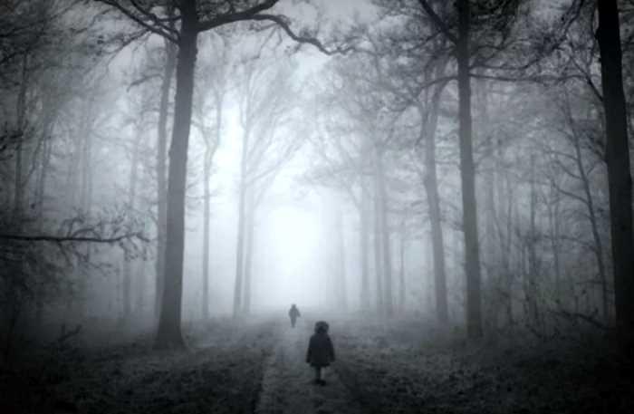 «Знайте свое место»: почему в Голландии родители бросают детей на ночь в лесу?