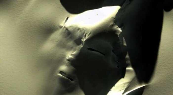 Гигантское человеческое «лицо» в Антарктике взволновало жителей сети