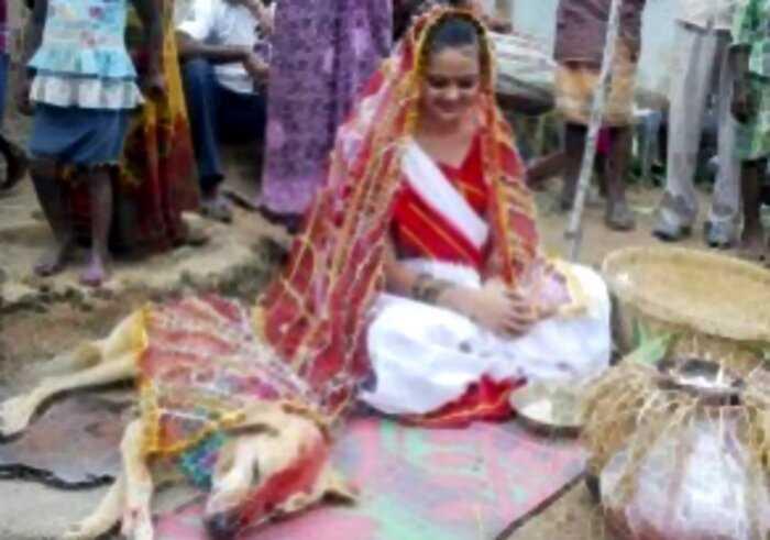 «Любовь зла»: Индийская девушка вышла замуж за собаку. Серьезно