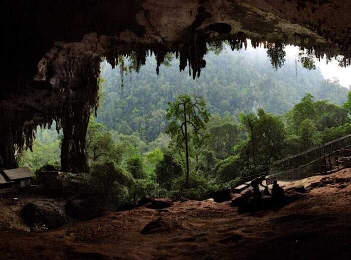 Братья, жившие в пещере, в один день проснулись миллионерами. Как такое произошло?
