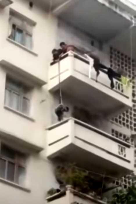 В Китае бабушка спустила с балкона внука, чтобы тот достал соседского кота