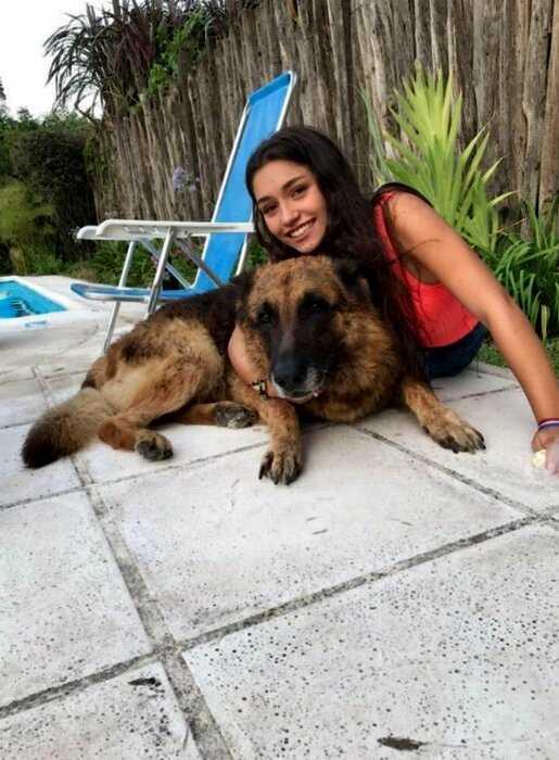 В Аргентине собака изуродовала лицо модели во время фотосессии