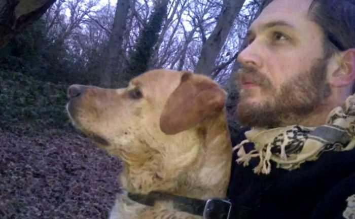 Интересное увлечение актера: Том Харди и собаки