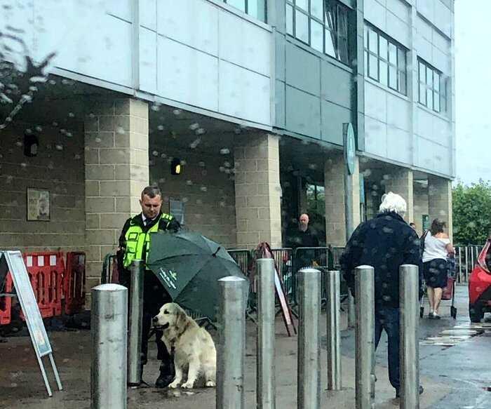 Трогательное фото: охранник супермаркета отдал ретриверу свой зонт, не дав ему промокнуть под дождём