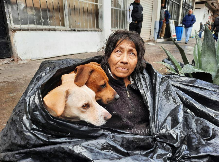 Бездомная бабушка отказалась идти в приют даже в холод, ведь кто тогда согреет её шестерых дворняжек