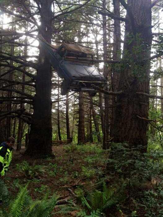 Молодожёны решили устроить фотосессию в лесу, а когда увидели на дереве старое авто изрядно испугались, но правда оказалась забавной