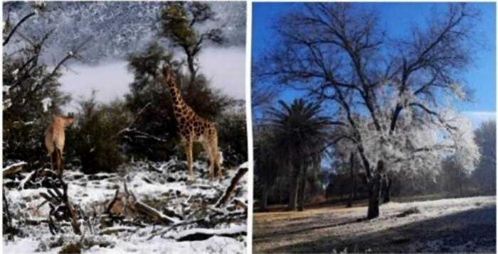 В ЮАР пришли рекордные морозы